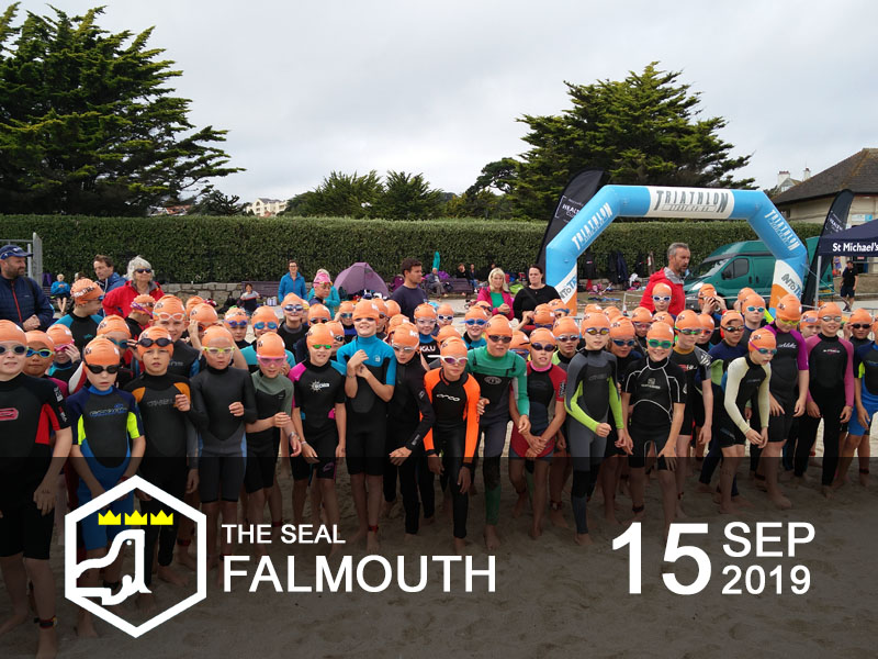 Falmouth Mini Tri 2019 - The Seal | INTOTRI | Adult & Kids Events
